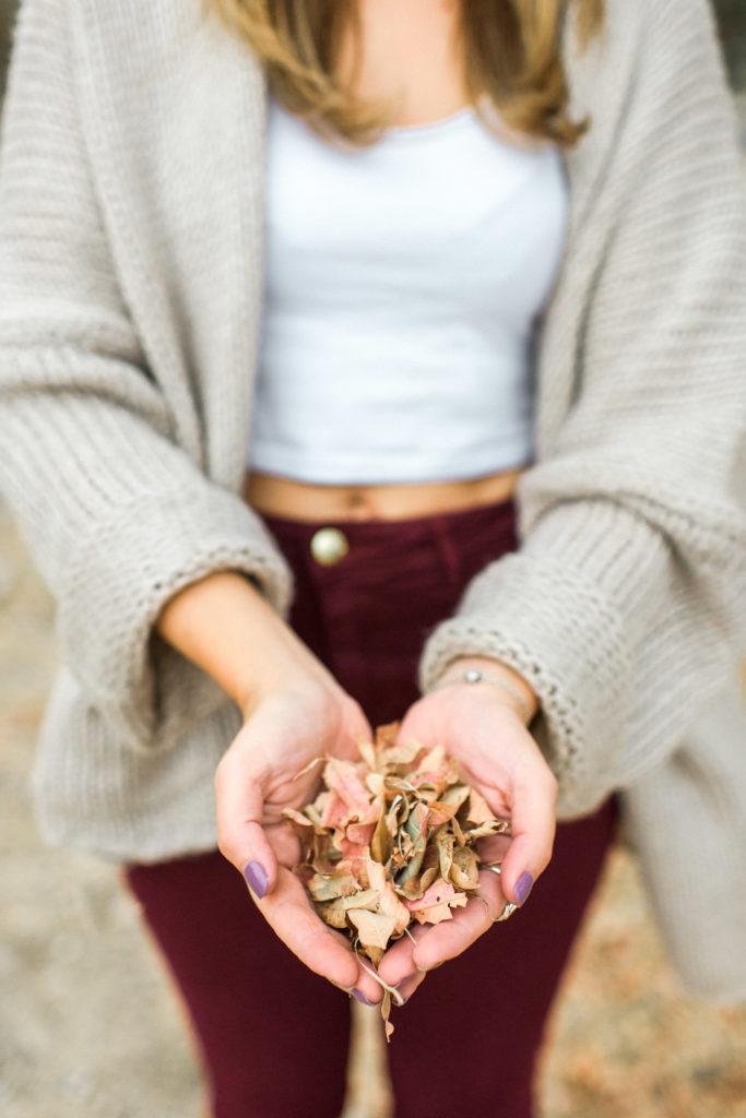 autumn pic nic