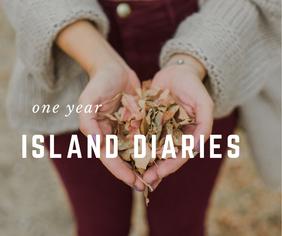 fire-autumn-happy-birthday-island-diaries
